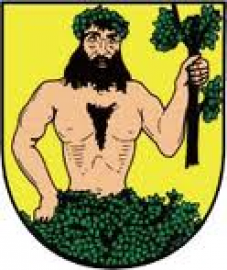 znak města albrechtic