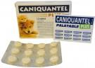 Caniquantel Plus