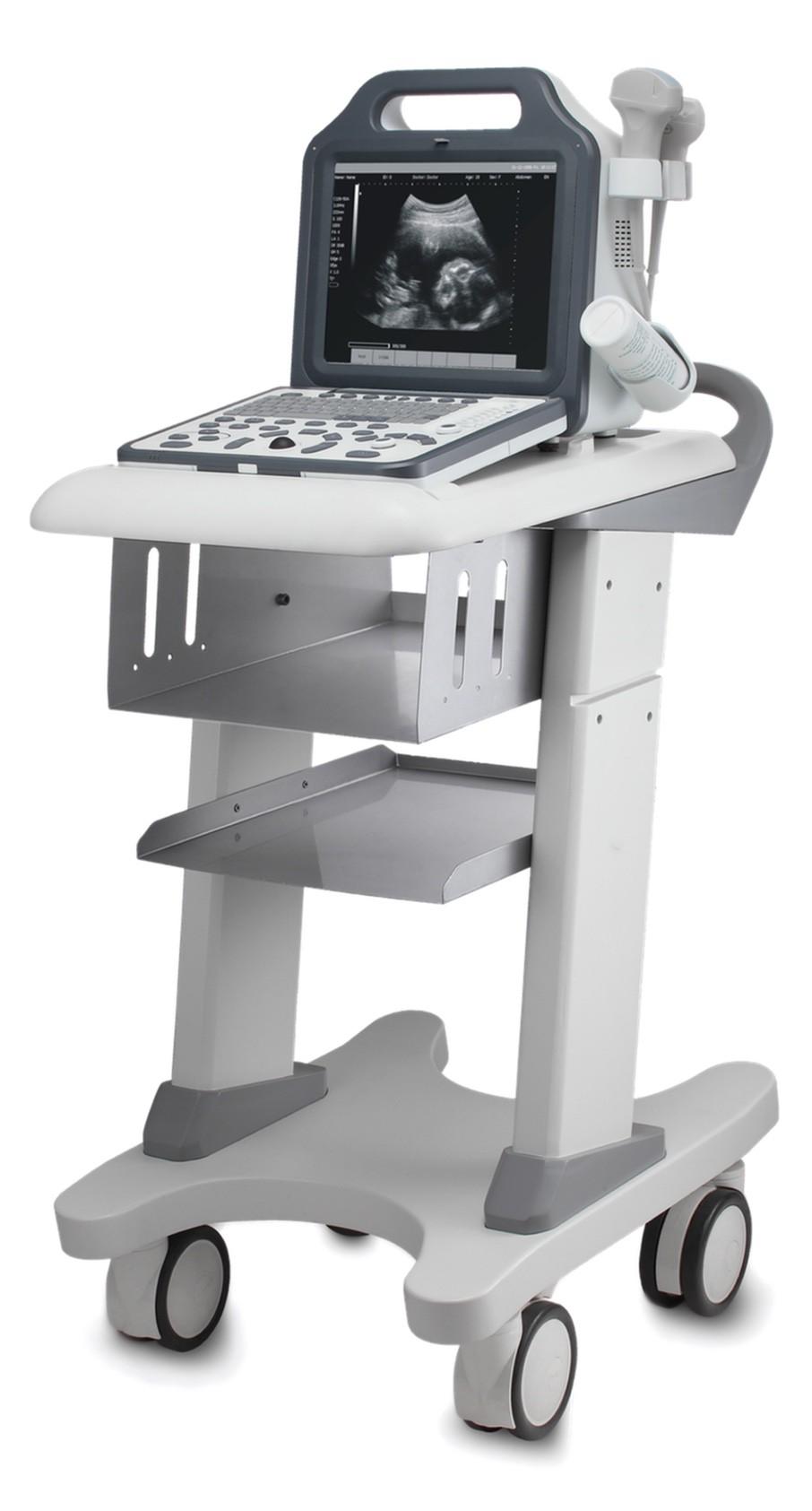Cysca W&B II Ветеринарный ультразвуковой сканер