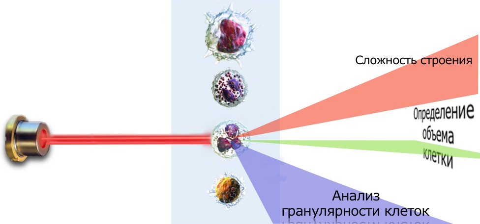 Лазерная цитометрия Heska