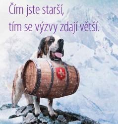 dog cgw - náhled