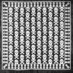 šátek do vlasů vzor lebky2138-3 (1)