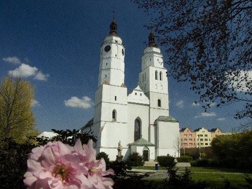 kostel sv. martina