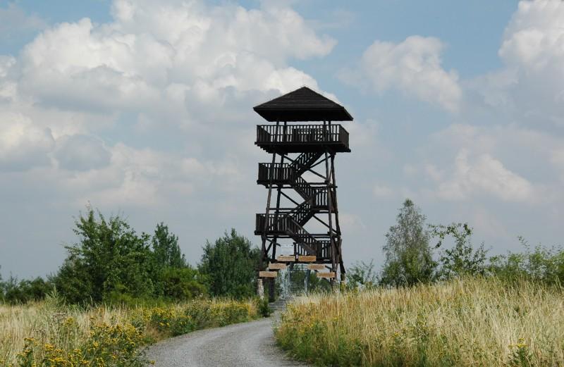 Piętnastometrowa, drewniana wieża widokowa położona na wzniesieniu o nazwie Kozia Góra (317m n.p.m.).