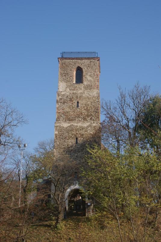 Wieża Widokowa we Włodzieninie