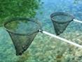 podběráky pro zahradní jezírka